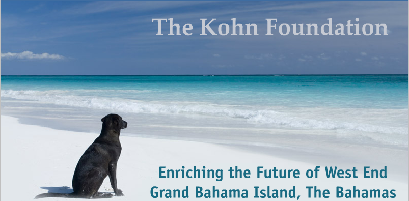 The Kohn Foundation
